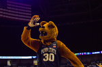Penn State Basketball: Nittany Lions Add Guard Sam Sessoms Via Transfer